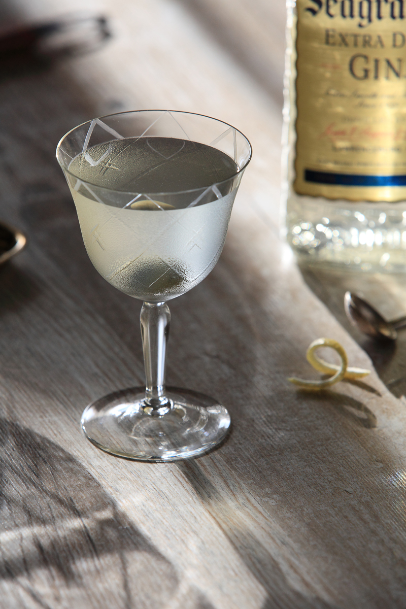 The Gin & French (Martini Cocktail) | ScienceOfDrink.com