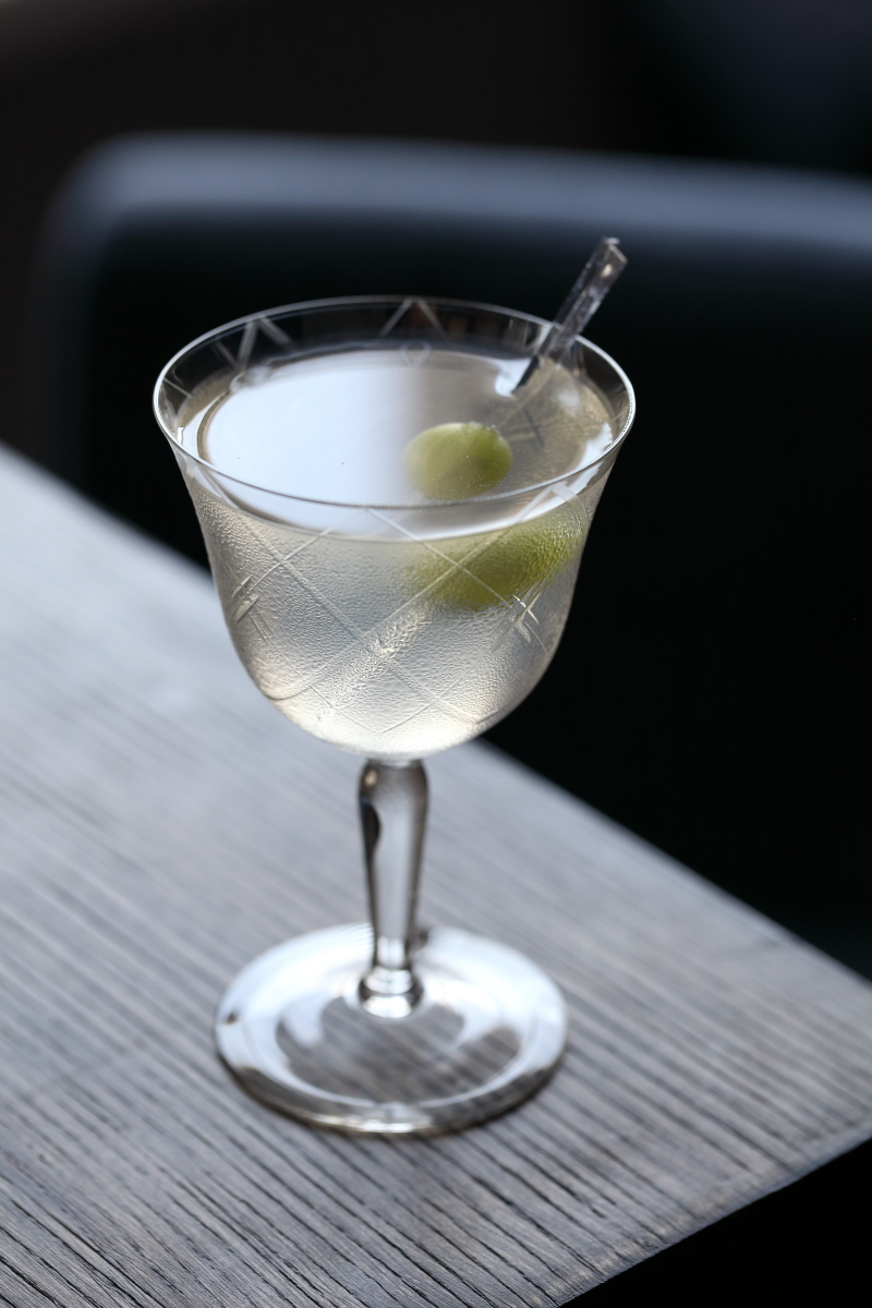 Extra Dry Martini Cocktail with Monkey 47 Gin | ScienceOfDrink.com