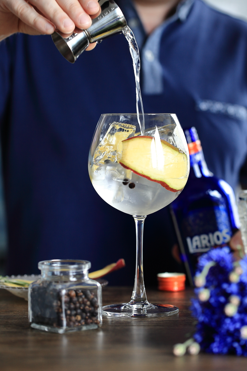 Good Gin Tonic needs interesting gin | ScienceOfDrink.com