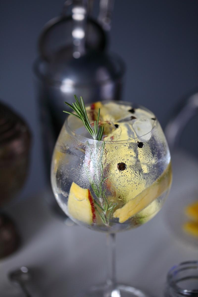 Gin Tonica Larios 12   ScienceOfDrink.com