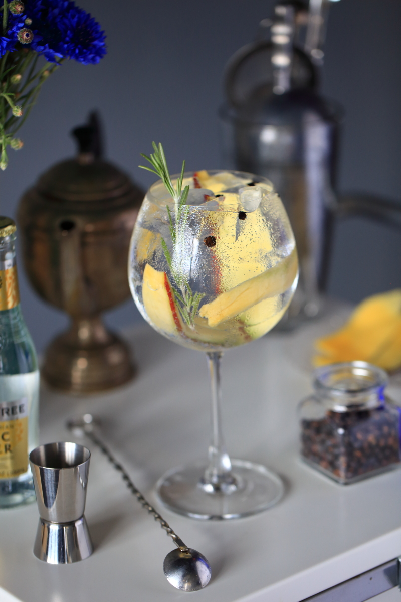 Modern Gin Tonic | ScienceOfDrink.com