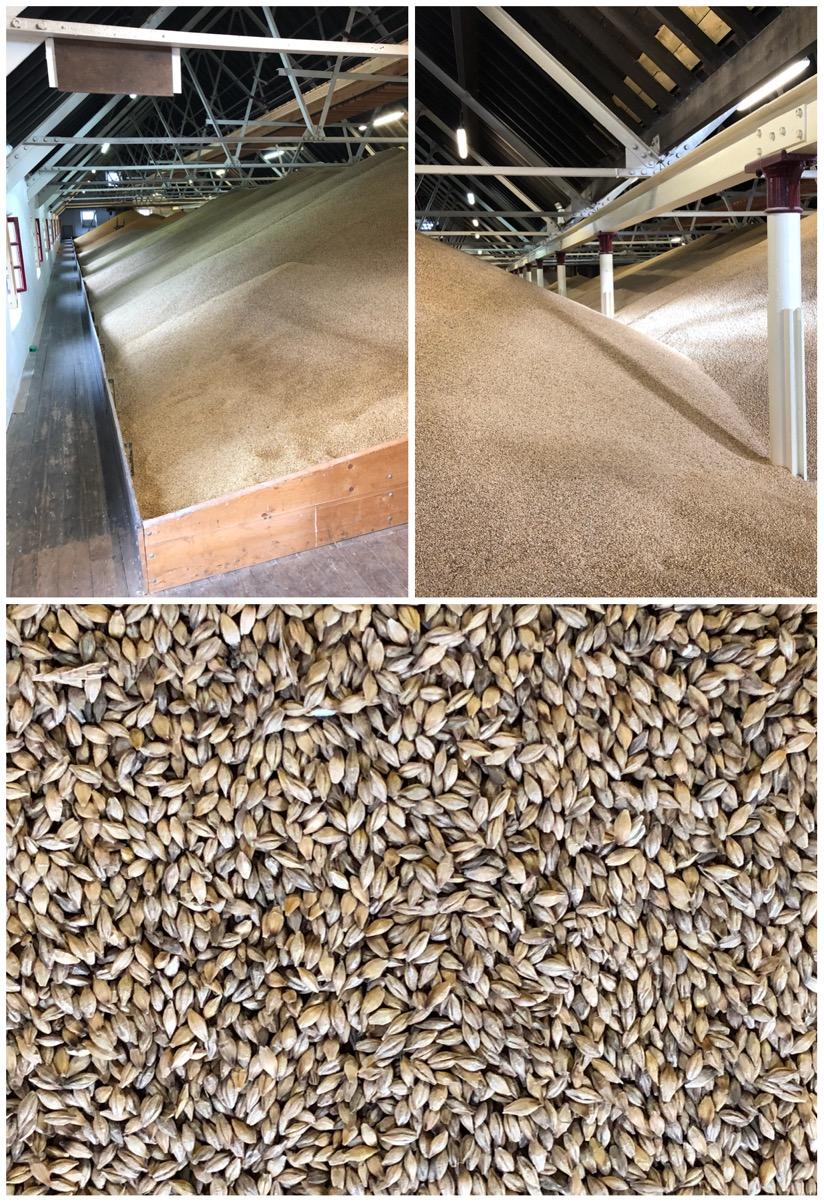 Balvenie Barley